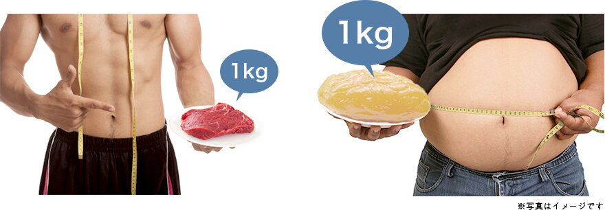 減らす を 筋 トレ 肉 の 胸 【プロが指導】皮下脂肪は筋トレのみで落ちる?効果的に燃焼させるメニューも紹介!